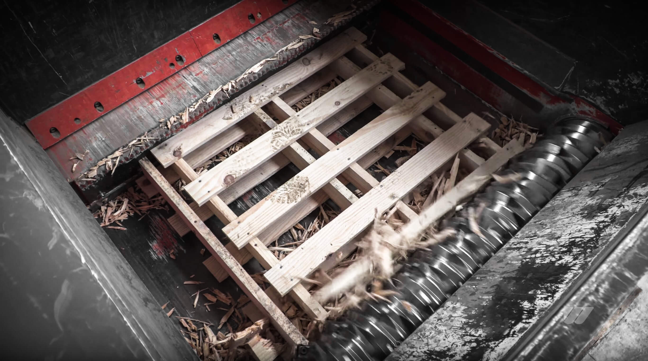 Shredding of pallets in the cutting chamber of a WLK 1500 shredder