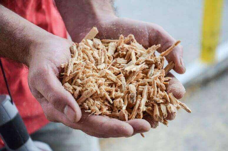 shredded wood
