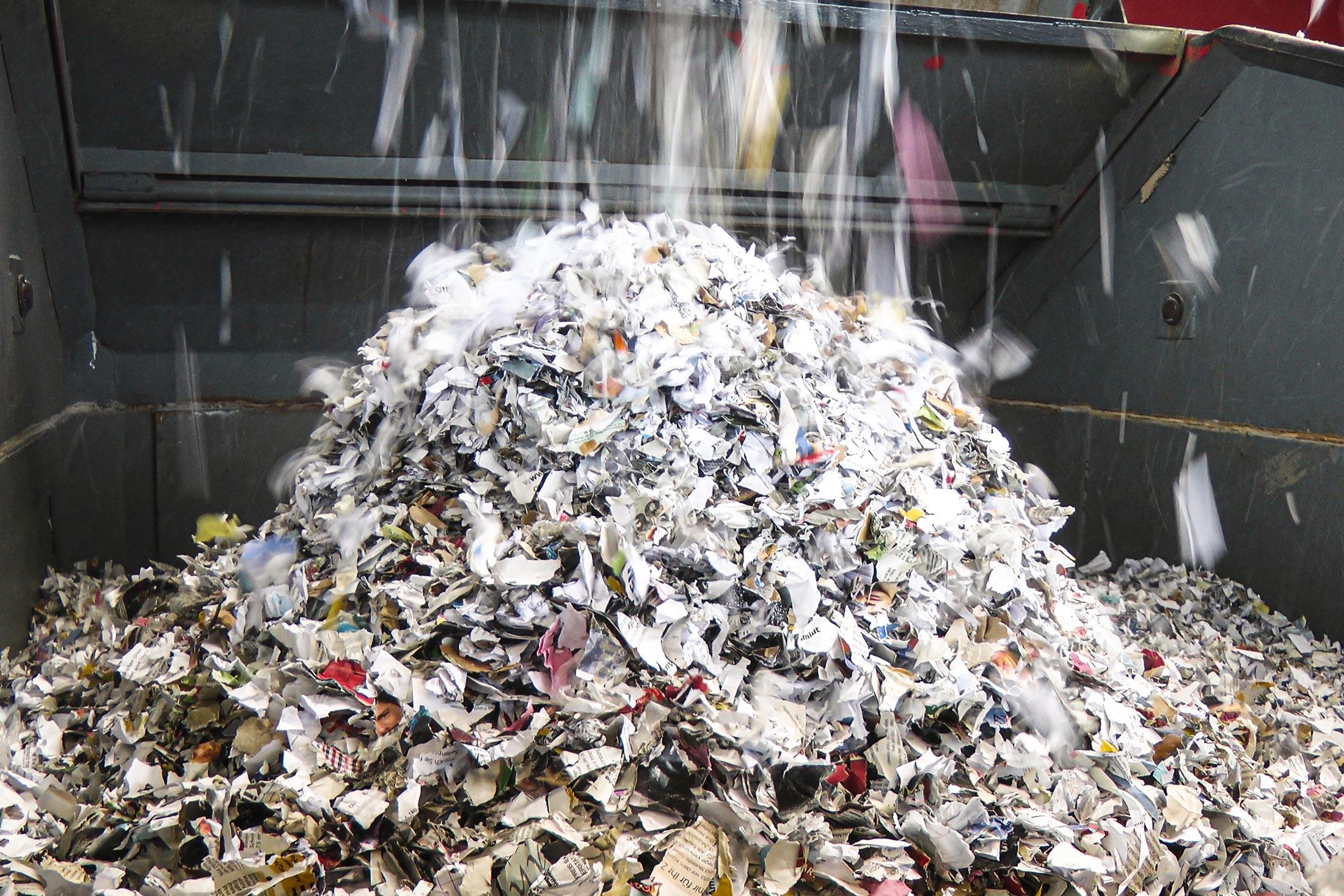 Piles of shredded paper scraps