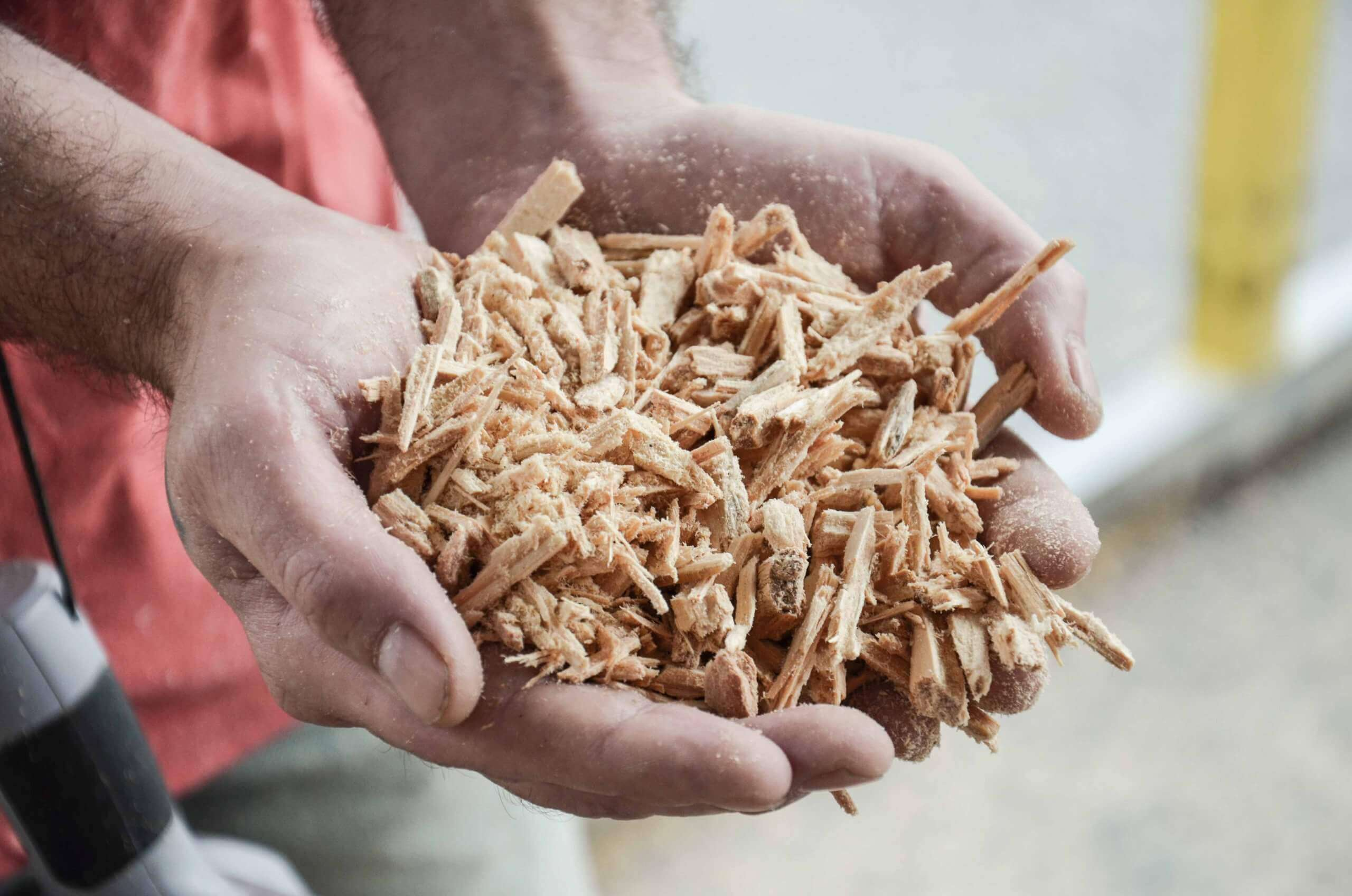 Wood chips are picked up with hands