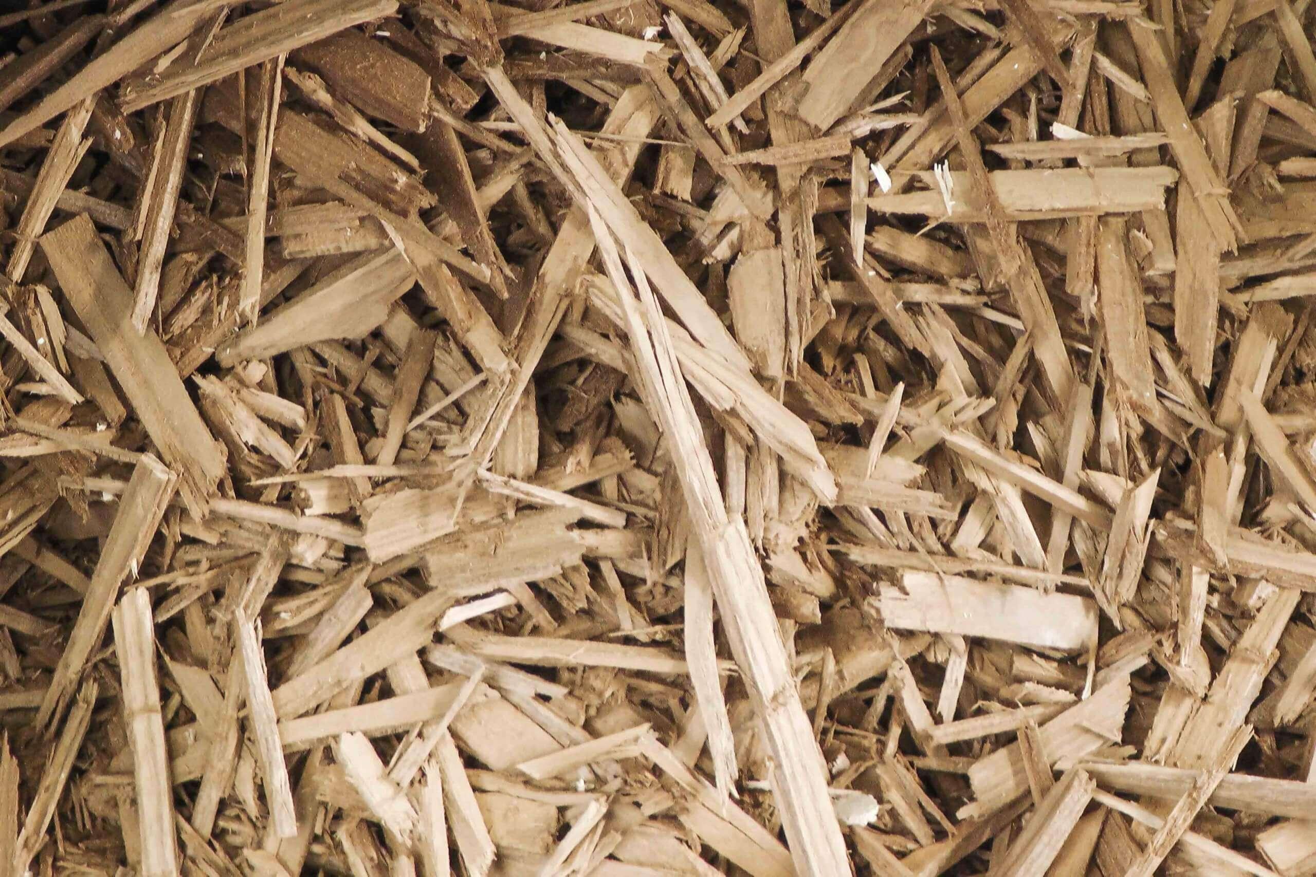 Heap of pre-broken wood