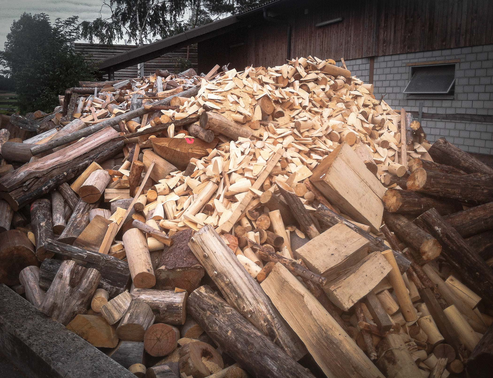 Wood from tree trunks on a pile before shredding for wood chip production