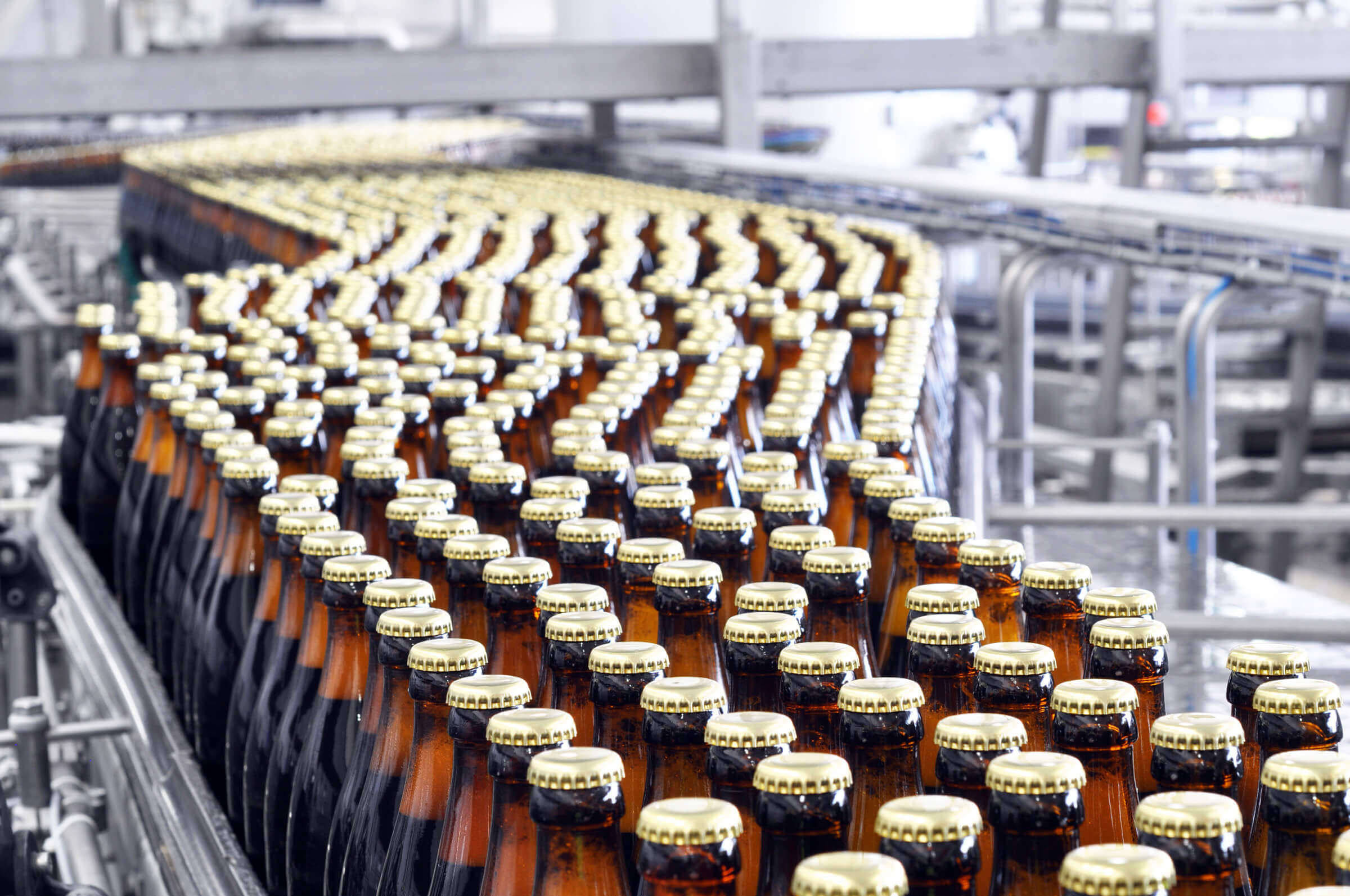 Beer bottles without labels after bottling process in brewery