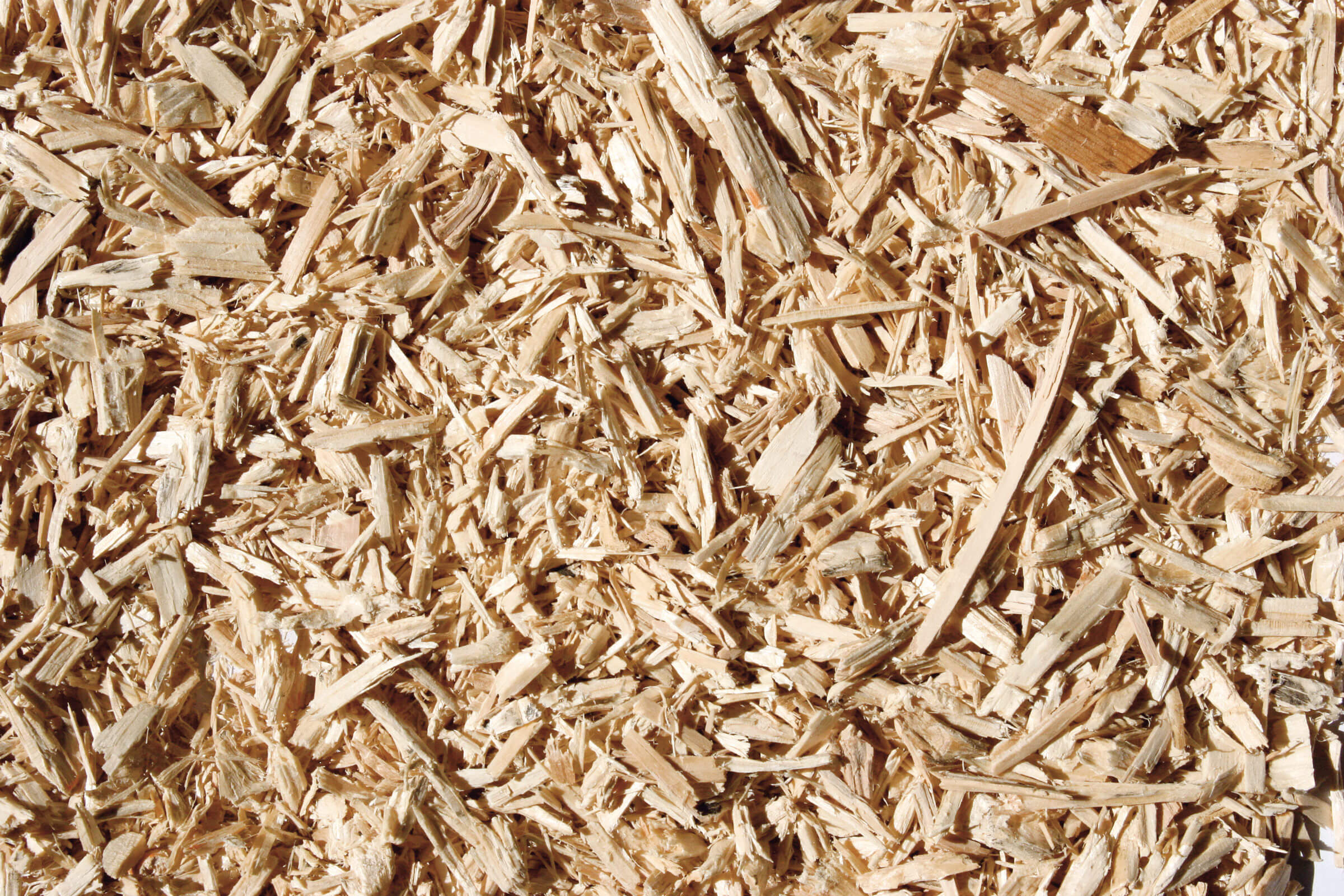 Dried wood chips from pallets