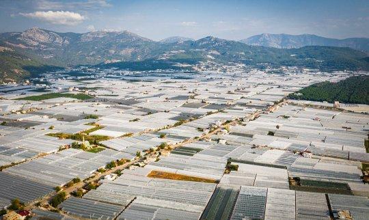 Treibhausfolie Agrifilm Europa deckt komplette Felder ab